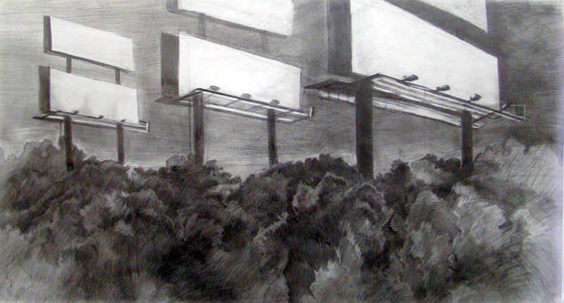 Opportunities 2011 graphite on paper 48 x 67 inches